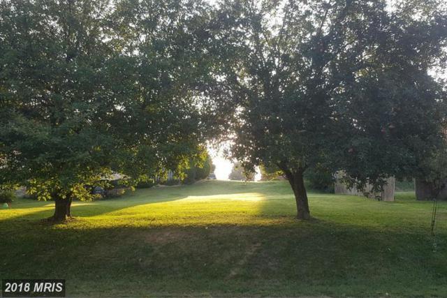 Polk Avenue, Front Royal, VA 22630 (#WR10036668) :: Pearson Smith Realty
