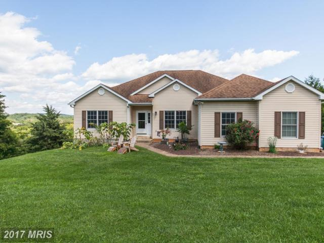 83 Windy Meadows Court, Front Royal, VA 22630 (#WR10052507) :: The Nemerow Team
