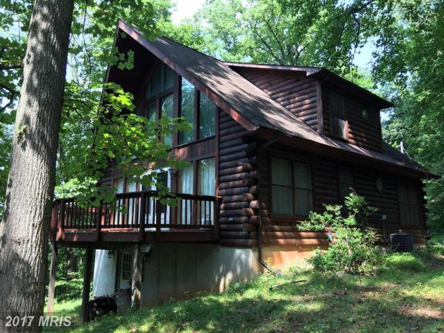 936 Northern Spy Drive, Linden, VA 22642 (#WR10054236) :: Pearson Smith Realty