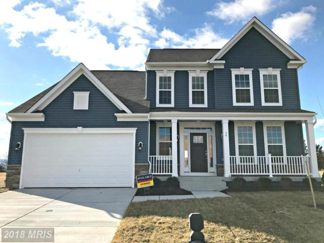 54 Albatross Court, Front Royal, VA 22630 (#WR10054990) :: Pearson Smith Realty