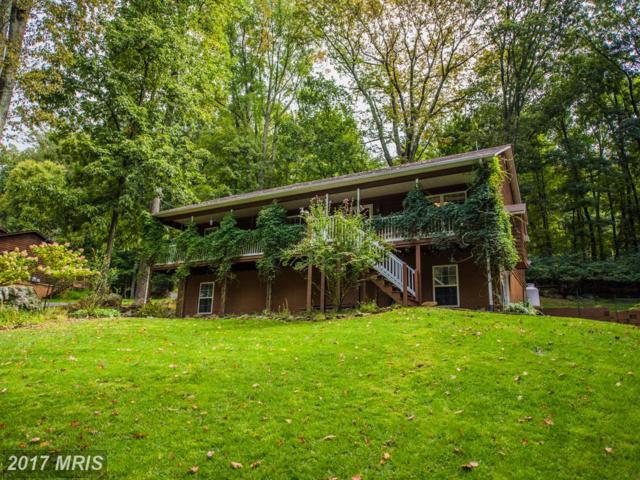 101 Shenandoah Valley Drive, Front Royal, VA 22630 (#WR10057807) :: Pearson Smith Realty