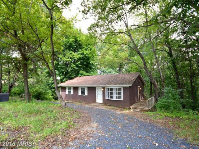 3502 Howellsville Road, Front Royal, VA 22630 (#WR10058974) :: Pearson Smith Realty