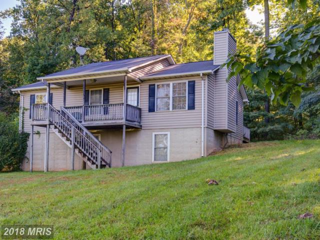 132 Mcdonalds Farm Road, Linden, VA 22642 (#WR10066133) :: Pearson Smith Realty