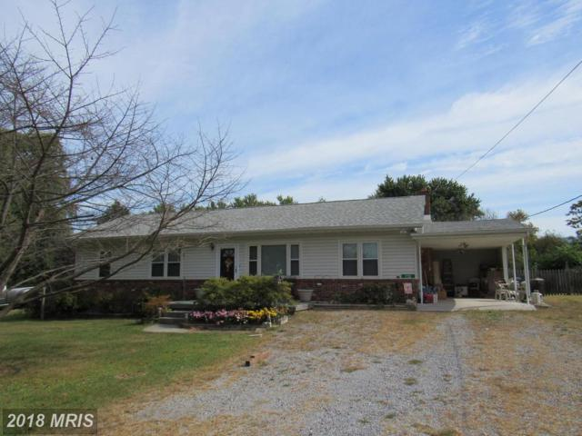 712 Youngs Drive, Front Royal, VA 22630 (#WR10076824) :: Pearson Smith Realty