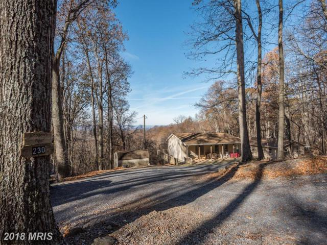 230 Woodpecker Way, Front Royal, VA 22630 (#WR10104604) :: Pearson Smith Realty