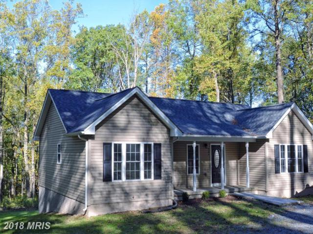 231 Buck Road, Linden, VA 22642 (#WR10117607) :: Pearson Smith Realty