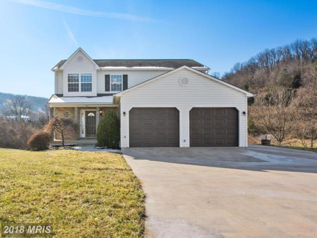1207 Devin Court, Front Royal, VA 22630 (#WR10117631) :: Pearson Smith Realty