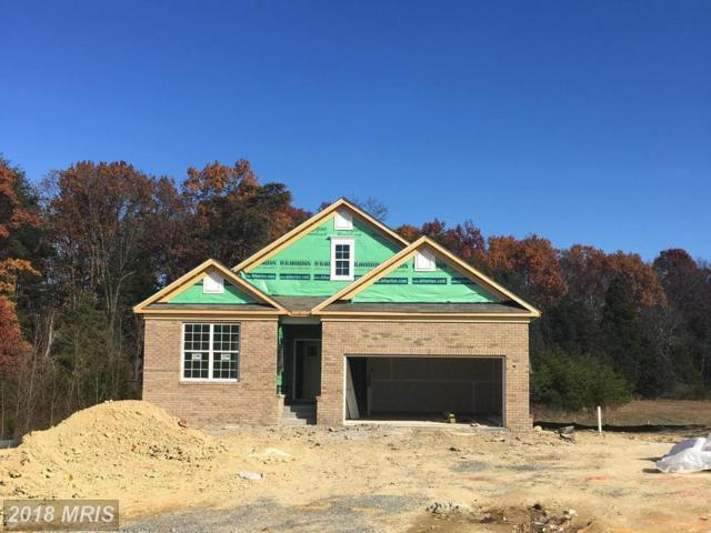 46 Hickory Shaft Court, Front Royal, VA 22630 (#WR10118347) :: AJ Team Realty