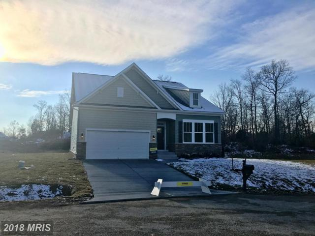 41 Hickory Shaft Court, Front Royal, VA 22630 (#WR10118400) :: AJ Team Realty