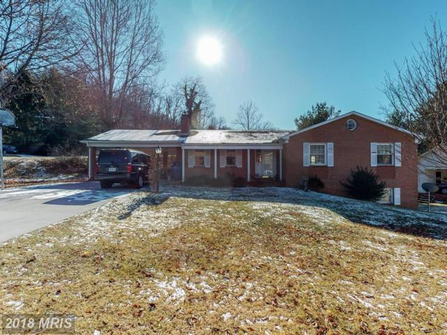 23 Portsmouth Road, Front Royal, VA 22630 (#WR10119168) :: Pearson Smith Realty