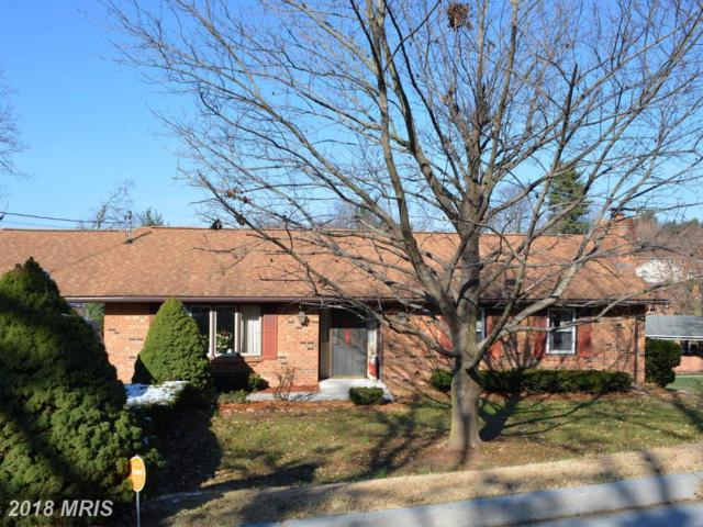 20 Gloucester Road, Front Royal, VA 22630 (#WR10119249) :: Pearson Smith Realty