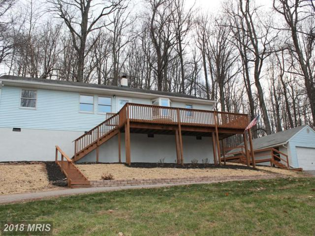 44 Hickory Tree Road, Front Royal, VA 22630 (#WR10120504) :: The Gus Anthony Team