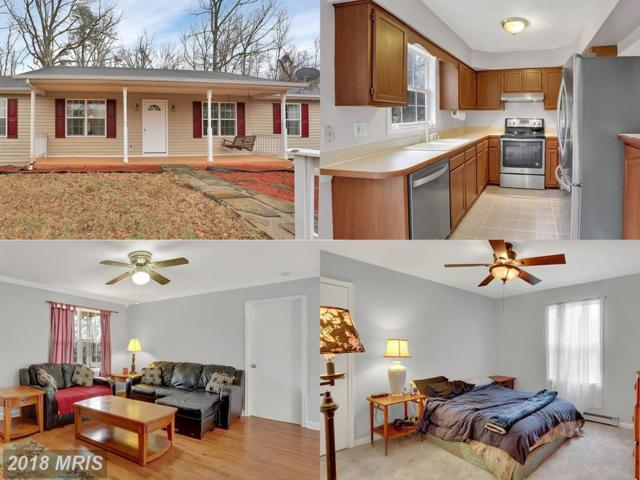 617 Rome Beauty Drive, Linden, VA 22642 (#WR10177528) :: RE/MAX Gateway