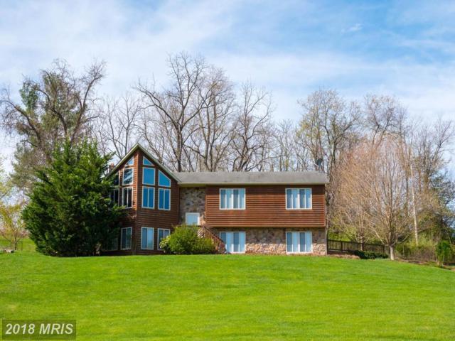 131 Walnut Court, Front Royal, VA 22630 (#WR10219137) :: Keller Williams Pat Hiban Real Estate Group