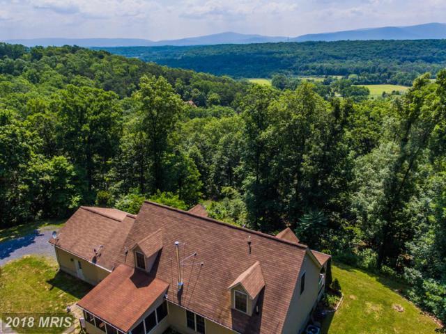 247 Lower Valley Road, Strasburg, VA 22657 (#WR10279533) :: Keller Williams Pat Hiban Real Estate Group