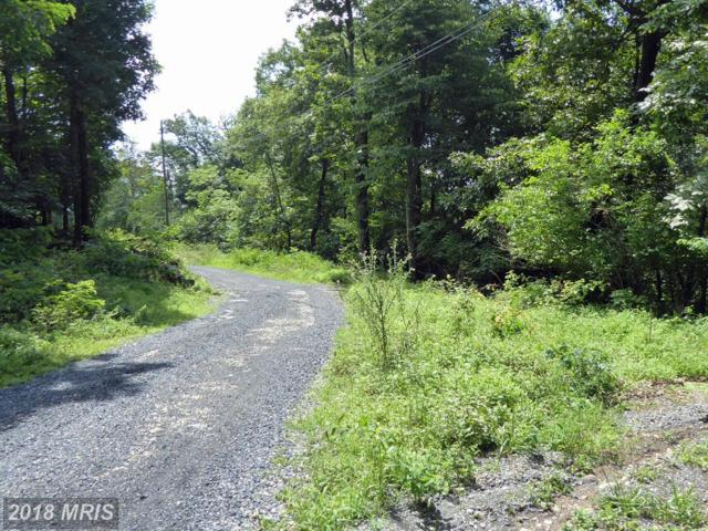 Alpine Drive, Front Royal, VA 22630 (#WR10308270) :: The Maryland Group of Long & Foster