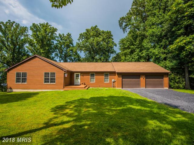 19 Honeysuckle Lane, Front Royal, VA 22630 (#WR9013428) :: The Maryland Group of Long & Foster