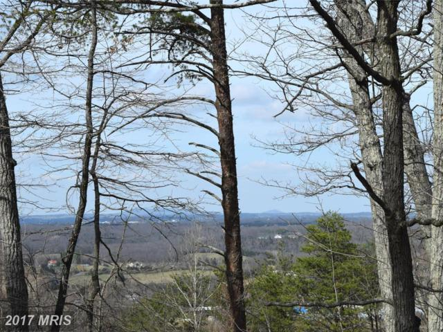 Lower View Road, Strasburg, VA 22657 (#WR9895610) :: Pearson Smith Realty
