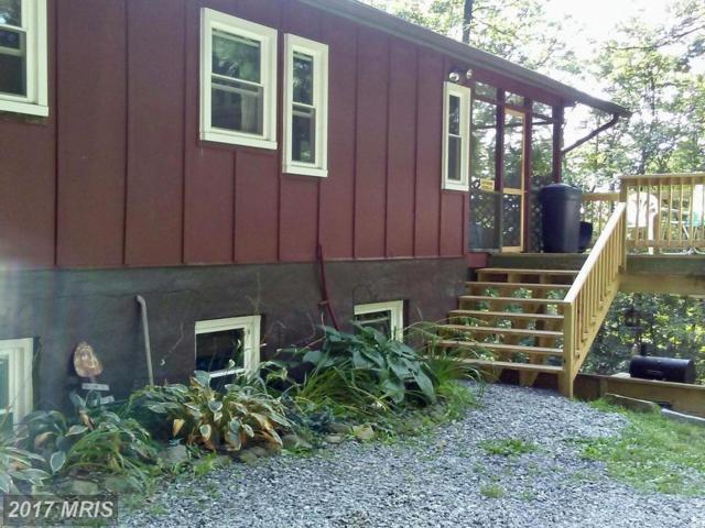 218 Trillium Trail Road, Linden, VA 22642 (#WR9897712) :: Pearson Smith Realty