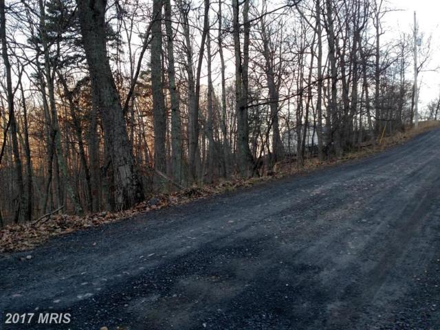 Brandy Road, Front Royal, VA 22630 (#WR9898099) :: Pearson Smith Realty