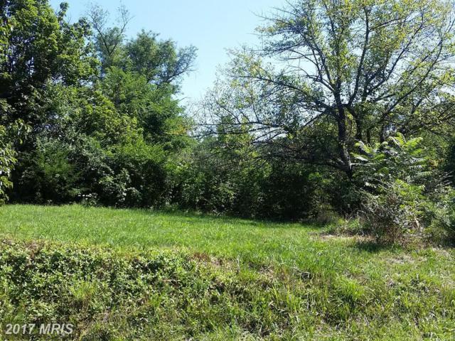 906 Strasburg Road, Front Royal, VA 22630 (#WR9905089) :: LoCoMusings