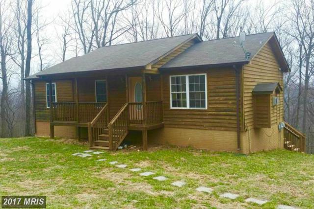 505 Mcdonalds Farm Road, Linden, VA 22642 (#WR9906673) :: LoCoMusings