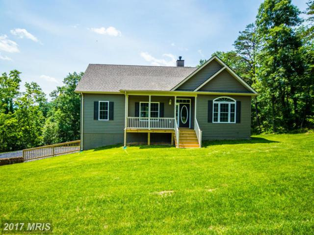24 Cappy Road, Linden, VA 22642 (#WR9907526) :: Pearson Smith Realty
