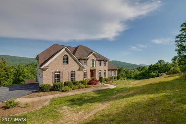 648 Kendall Court, Front Royal, VA 22630 (#WR9953817) :: LoCoMusings