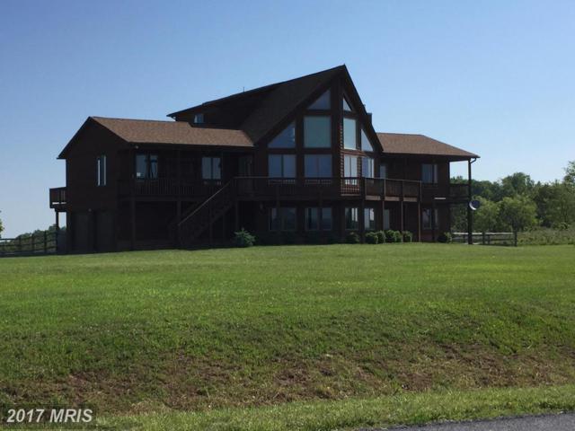 176 Freezeland View Lane, Linden, VA 22642 (#WR9963632) :: LoCoMusings
