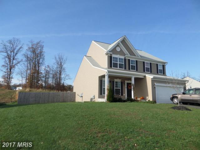 437 Misty Hill Drive, Delta, PA 17314 (#YK10097981) :: Pearson Smith Realty