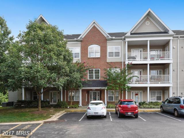 801 Latchmere Court #104, Annapolis, MD 21401 (#AA10040714) :: Pearson Smith Realty