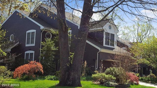 114 Summer Village Drive, Annapolis, MD 21401 (#AA10045208) :: LoCoMusings