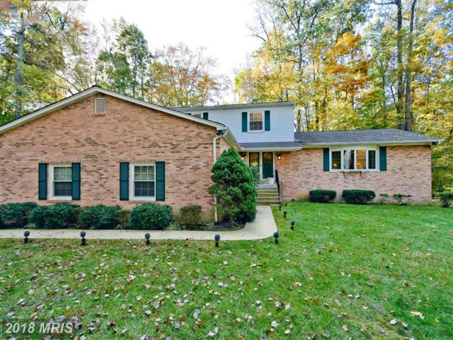501 Winding Creek Court, Davidsonville, MD 21035 (#AA10070079) :: Pearson Smith Realty