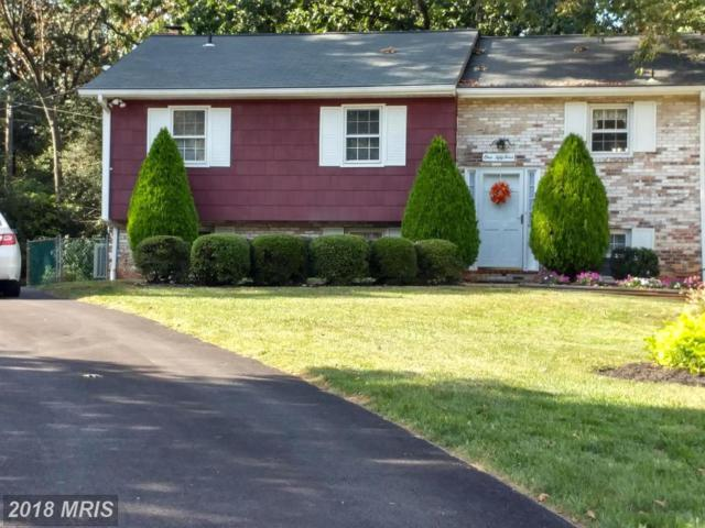 154 Long Point Court, Pasadena, MD 21122 (#AA10073983) :: Pearson Smith Realty