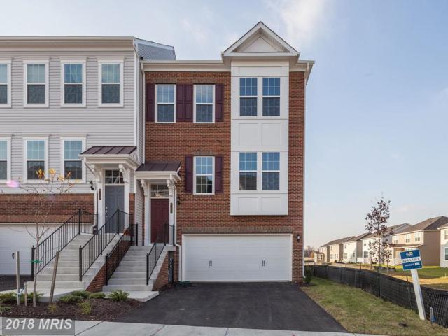 8122 Dalton Way, Hanover, MD 21076 (#AA10093902) :: Pearson Smith Realty