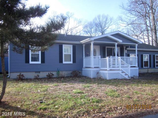 5184 Park Avenue, Shady Side, MD 20764 (#AA10147073) :: The Gus Anthony Team