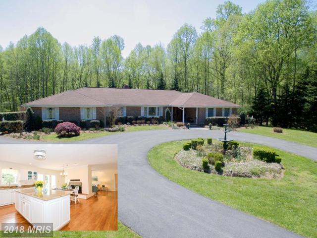 3513 Castle Way, Davidsonville, MD 21035 (#AA10197836) :: Browning Homes Group
