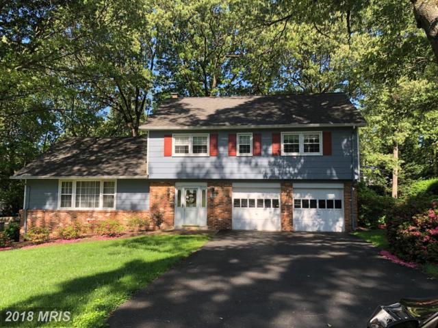 440 Lynwood Drive, Severna Park, MD 21146 (#AA10205237) :: Dart Homes