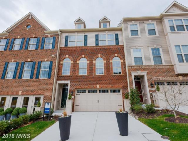 1110 Lanham Lane, Gambrills, MD 21054 (#AA10209053) :: Maryland Residential Team