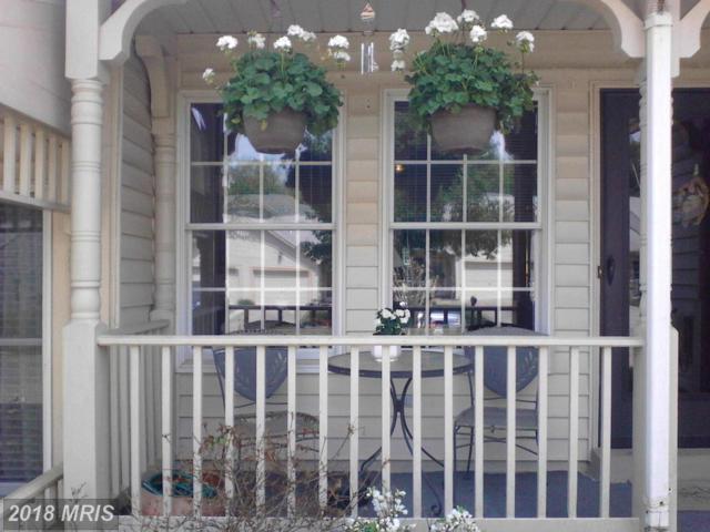 1962 Marconi Circle, Annapolis, MD 21401 (#AA10226594) :: Dart Homes