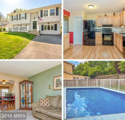 2525 Flowering Tree Lane, Gambrills, MD 21054 (#AA10233696) :: The Gus Anthony Team