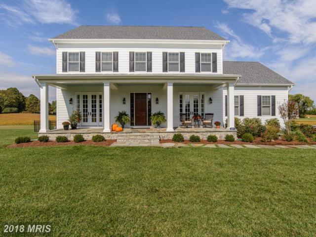776 Olivia Way, Pasadena, MD 21122 (#AA10240278) :: Labrador Real Estate Team