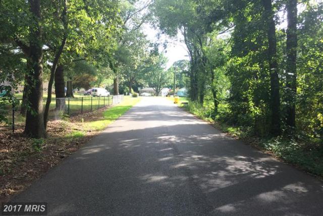 7844 Bertha Road, Pasadena, MD 21122 (#AA9716857) :: LoCoMusings