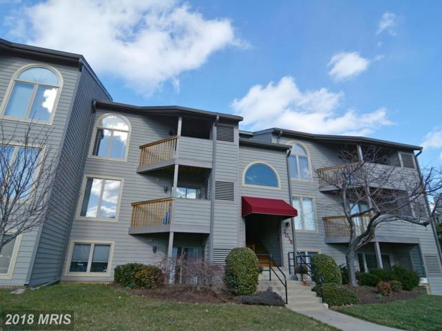 2016 Quay Village Court #202, Annapolis, MD 21403 (#AA9876931) :: Pearson Smith Realty