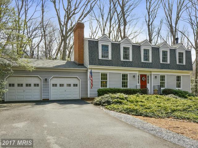 539 Powell Drive, Annapolis, MD 21401 (#AA9899368) :: Pearson Smith Realty