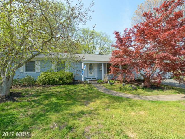 1110 Carrs Wharf Road, Edgewater, MD 21037 (#AA9917954) :: Pearson Smith Realty