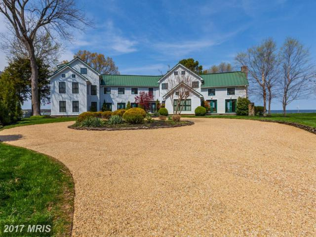 1230 Griner Lane, Shady Side, MD 20764 (#AA9919441) :: Pearson Smith Realty