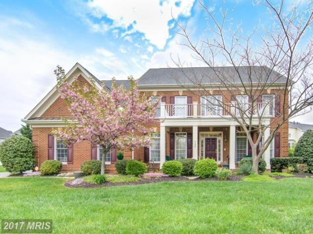 704 Childs Point Road, Annapolis, MD 21401 (#AA9920155) :: Pearson Smith Realty