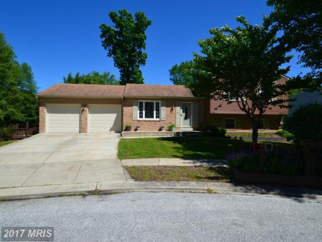 5505 Berkley Manor Lane, Churchton, MD 20733 (#AA9948859) :: Pearson Smith Realty