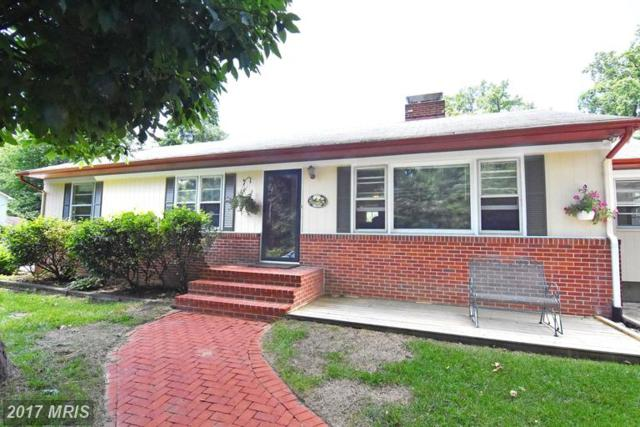 1033 Pinecrest Drive, Annapolis, MD 21403 (#AA9949338) :: LoCoMusings